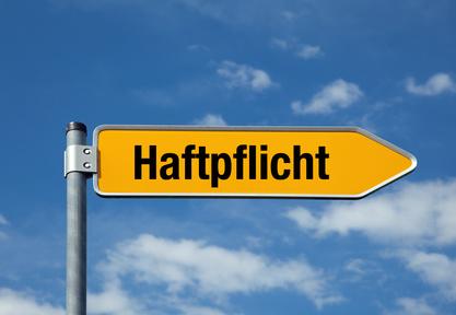 Haftpflicht, Hausrat & Co: Ist Ihre Familie gut abgesichert?