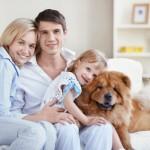 Artikelgebend ist Wissenswertes für Patchworkfamilien.