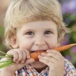Junge isst eine Karotte