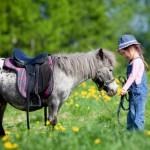 Kind mit einem Pony auf einer Wiese