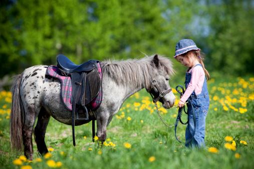 Urlaub auf dem Bauernhof – Hier schlagen kleine Herzen schneller