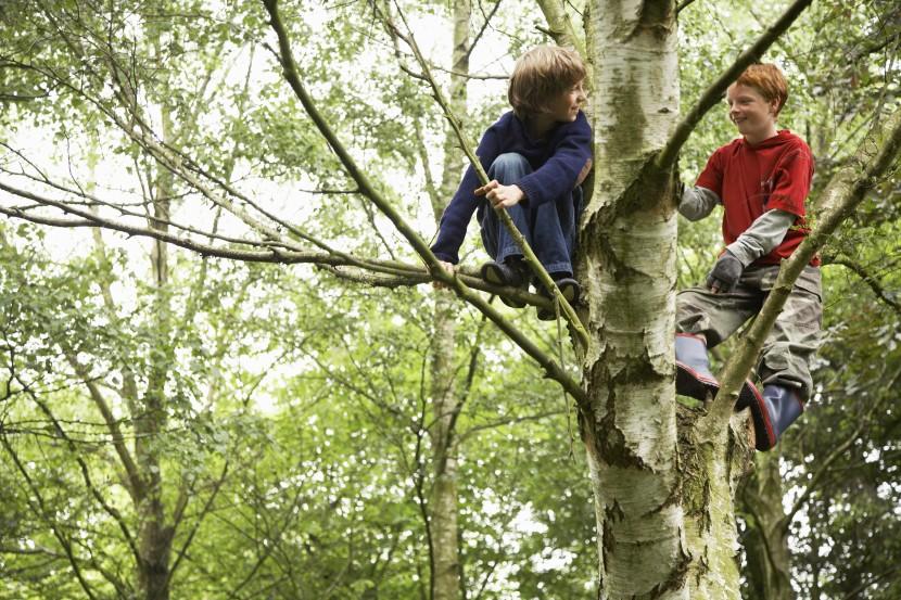 Naturerfahrungen als beste Förderung für die kindliche Entwicklung