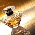 Duftkreationen von Rang – gekürt beim Parfumpreis Duftstars 2016
