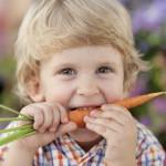 Sieben Leitsätze für die Kinderernährung
