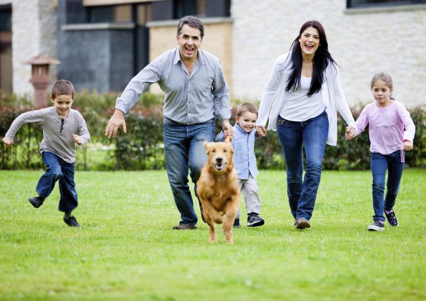 Welches Haustier passt zu meinem Kind?