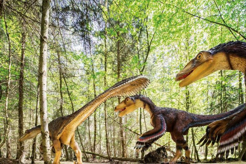 Im Dinopark im Naturpark Altmühltal wartet eine faszinierende Zeitreise